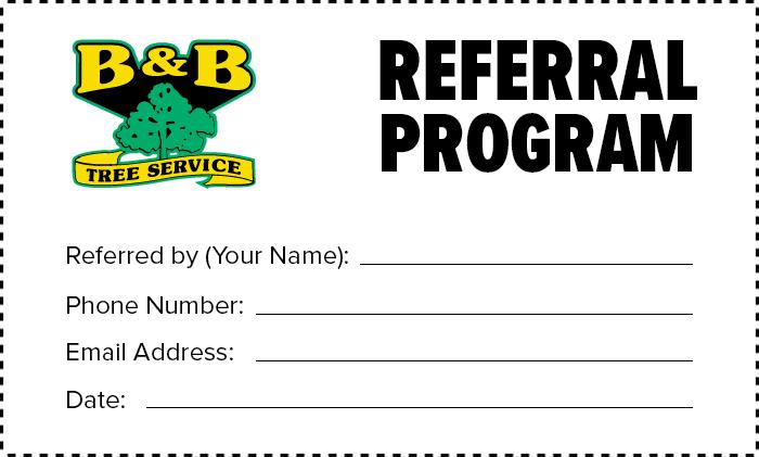 bnb-tree-referral-program