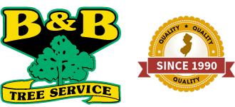 B and B Tree Service Logo